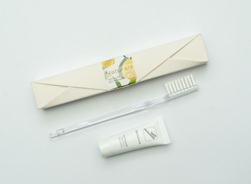 Naturals  - Dental Kit in Envelop Shaped Cardboard